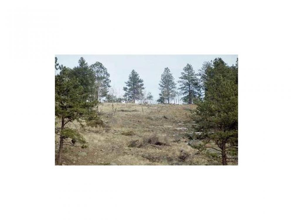 0  Lot 24 Lions Head Rnch Pine, CO 80470    MLS# 791289